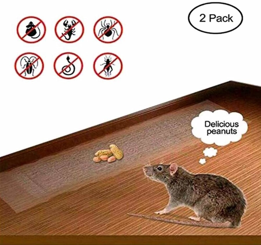 Keep insects and mice away